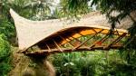 green-school-home