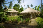 yurt of Green School